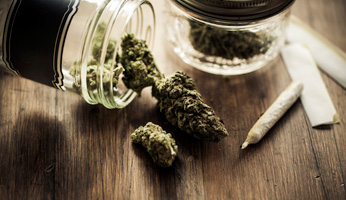 Michigan Marijuana Lawyer