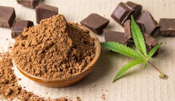 Marijuana Processing