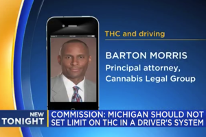 New report on THC levels in MI drivers leaves residents with mixed reactions
