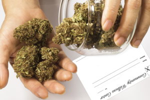 Who's smokin'? Marijuana citations drastically down since Proposal 1 went into effectWho's smokin'? Marijuana citations drastically down since Proposal 1 went into effect