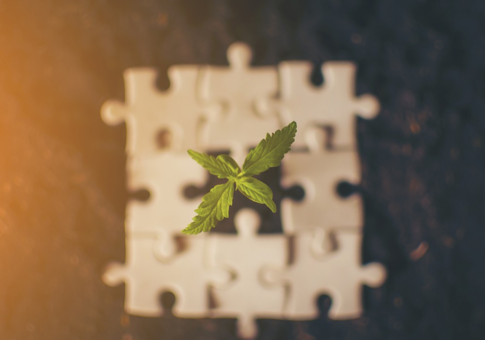 purchase a licensed cannabis facility