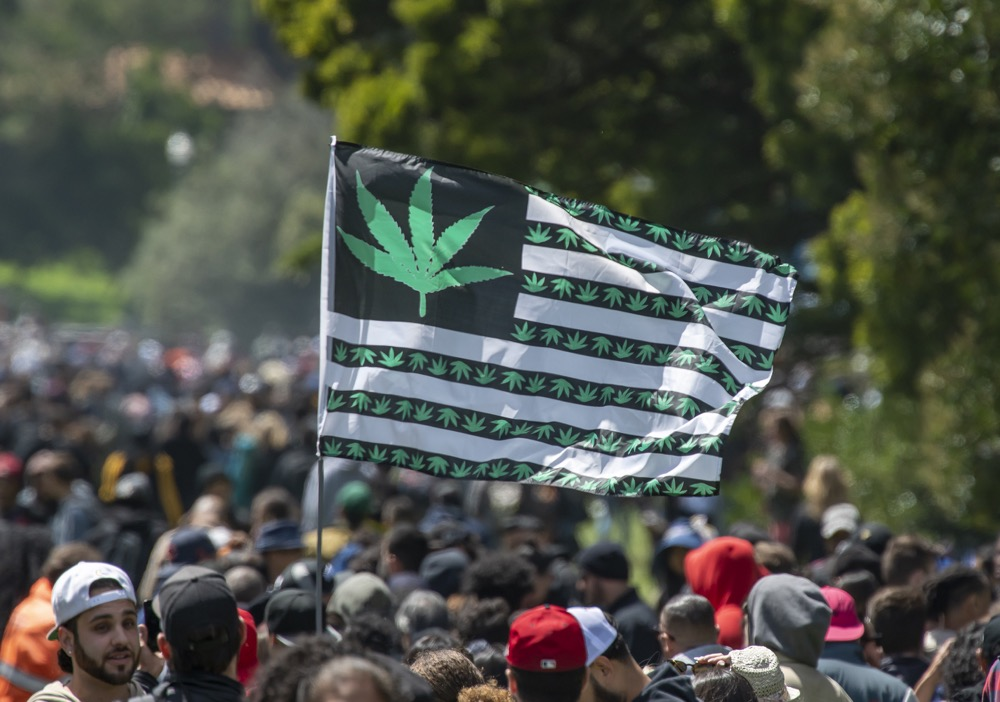 marihuana event license