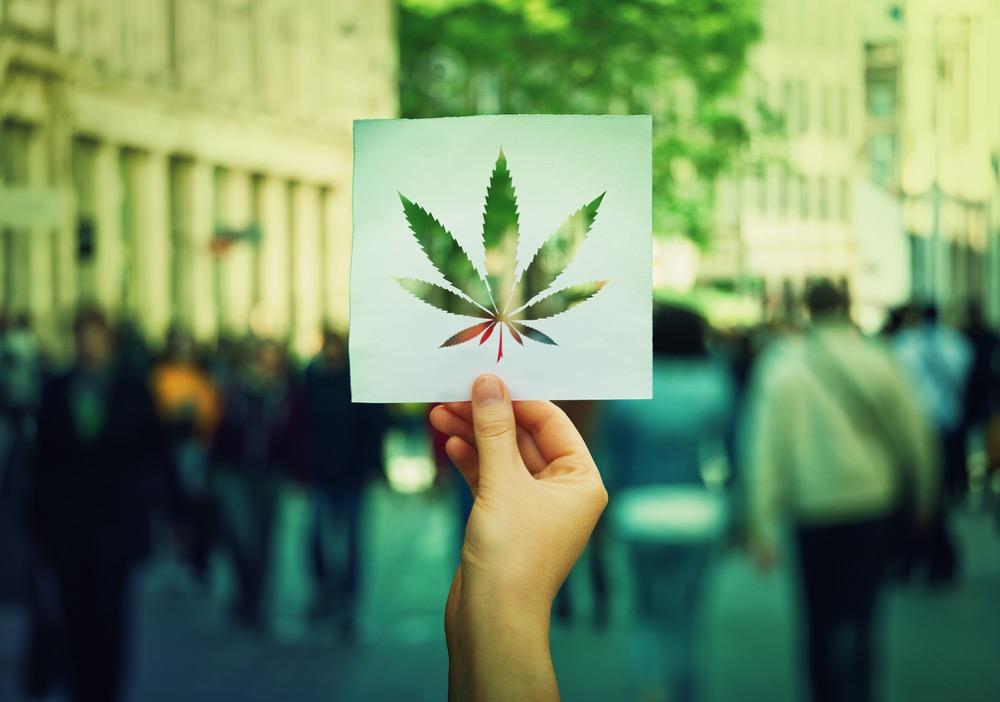Michigan Adult-Use Marijuana License Applications